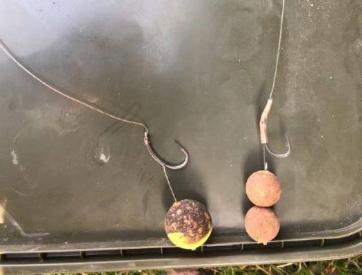 Ловля карпа на поплавочную удочку: снасти и оснастка, прикормка и наживки