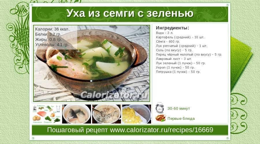 Калорийность ухи из семги с картофелем