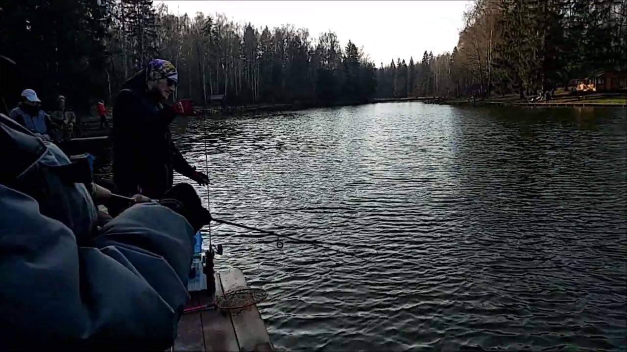 Клевое место. савельево рыбалка в подмосковье ? fisherway.ru