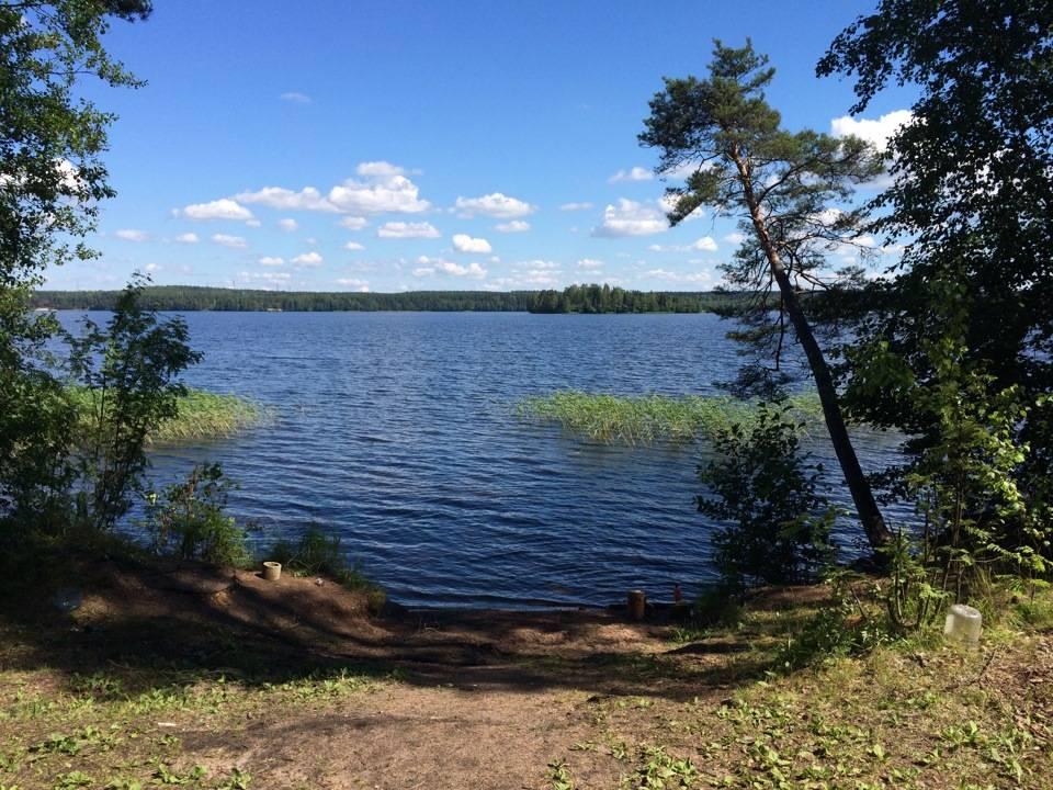 Лемболовское озеро. рыбалка 2020, отзывы, на карте, глубина, базы отдыха, фото, как добраться – туристер. ру