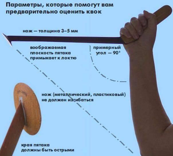 Ловля сома на квок - изготовление квока своими руками, снасти, как и где ловить