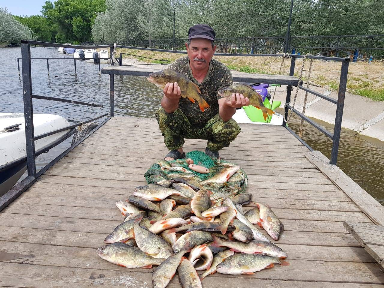 Рыбалка в костанайской области: где лучше клюет, выбор мест для ловли в костанае