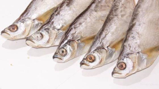 Где и как нужно хранить вяленую и сушеную рыбу?