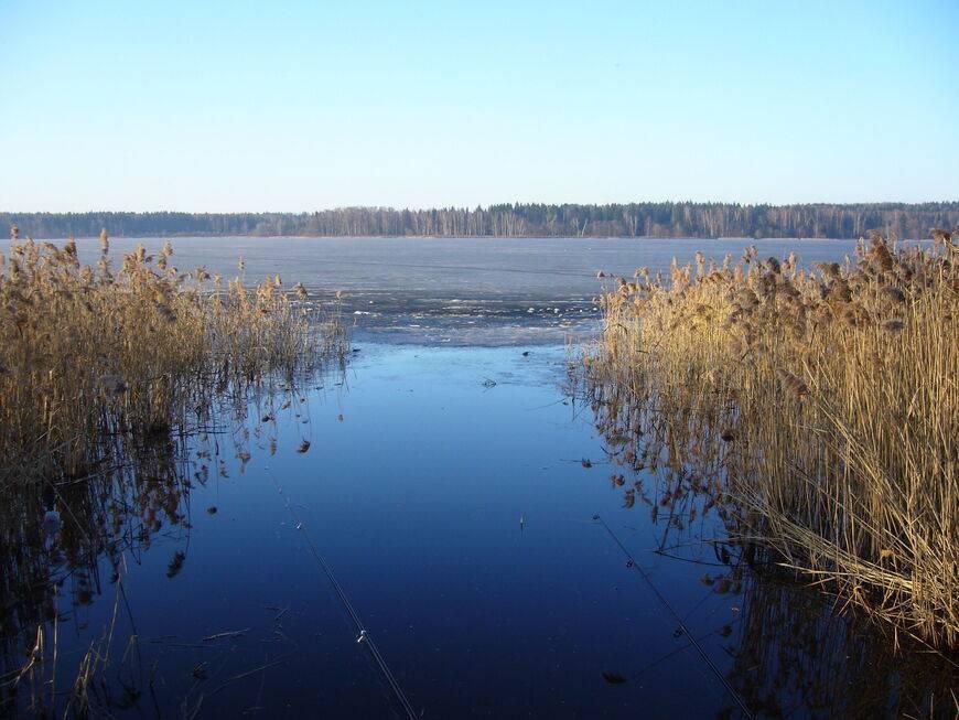 База «Долгое озеро» (Московская область): описание и отзывы