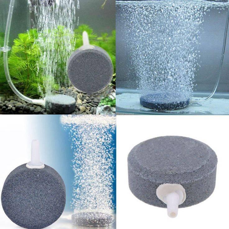 Фильтрация и фильтр для аквариума с растениями – травника