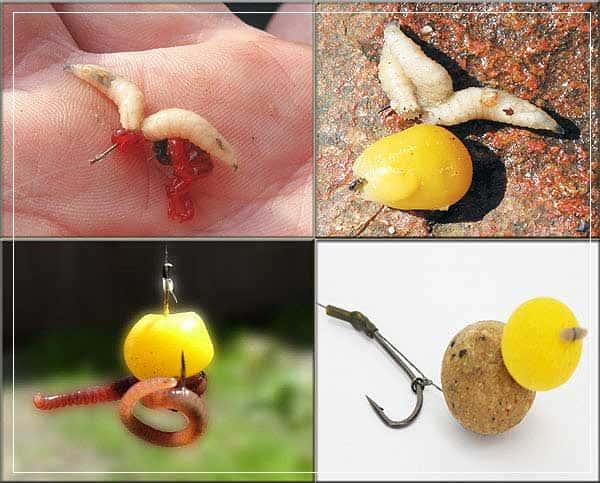 Ловля леща на фидер весной и летом - оснастка, наживки, видео