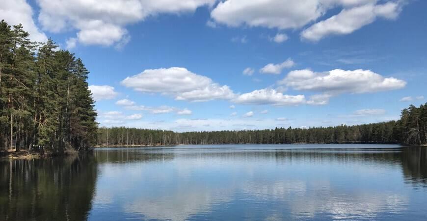 Нахимовское озеро, ленинградская область: рыбалка, базы, отдых, карта, фото, отзывы, отели рядом — туристер.ру