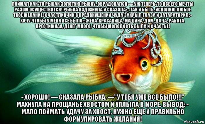 Болезни золотых рыбок и их лечение