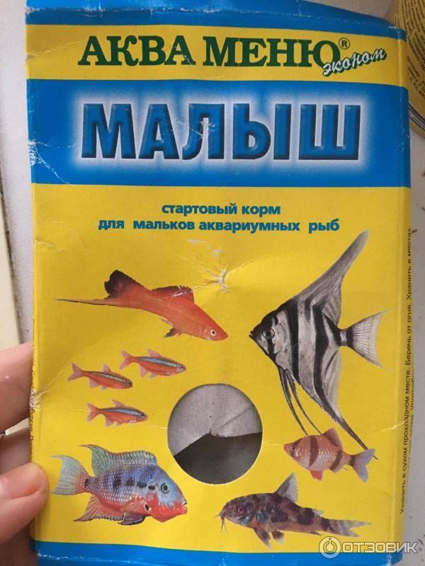 Питание аквариумных рыбок и виды кормов