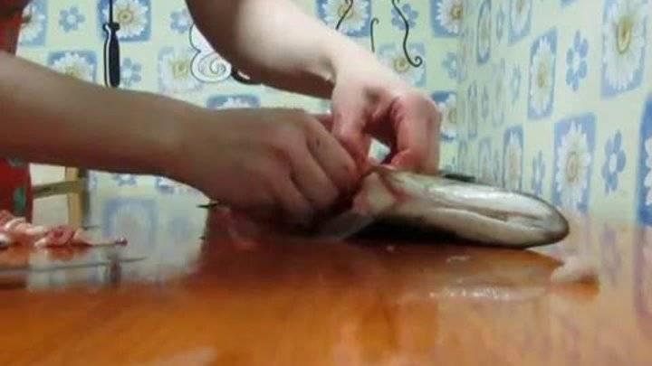 Как правильно очистить и разделать щуку