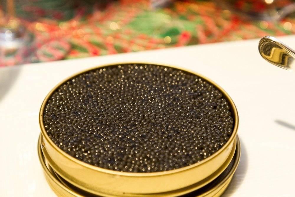 Черная икра: чем полезна для организма, химический состав, сколько калорий, применение