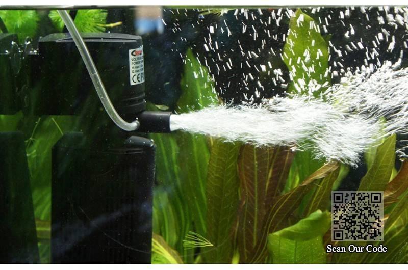 Как почистить аквариум в домашних условиях: правила, инструменты, порядок работ