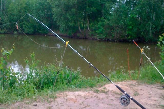 Рыбалка на волге в августе: какая рыба клюет, особенности ловли на среднем течении