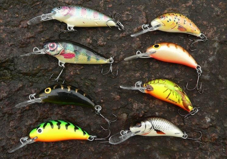 Топ-5 воблеров для ловли судака на мелководье - статьи о рыбалке