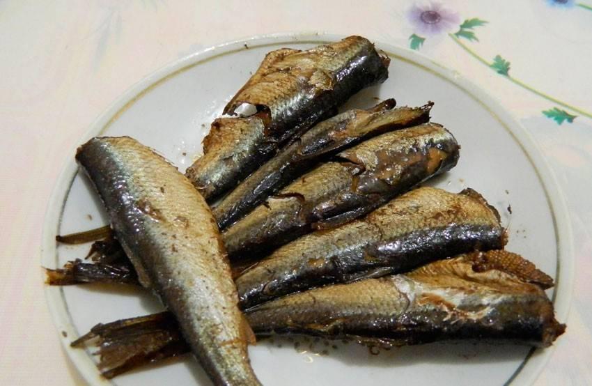 Из какой рыбы делают шпроты? Консервы «Шпроты в масле»