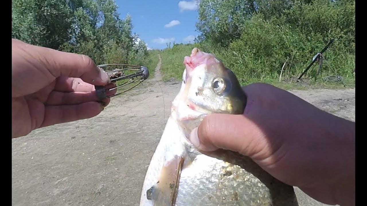 Рыбалка на каме