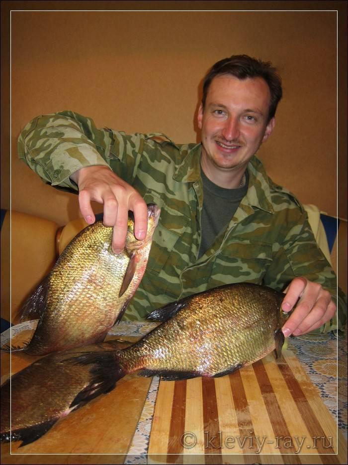 Рыбалка в вологде и вологодской области: на реке сухона и озере белом, кубенском и воже, другие места. куда поехать для ловли раков?