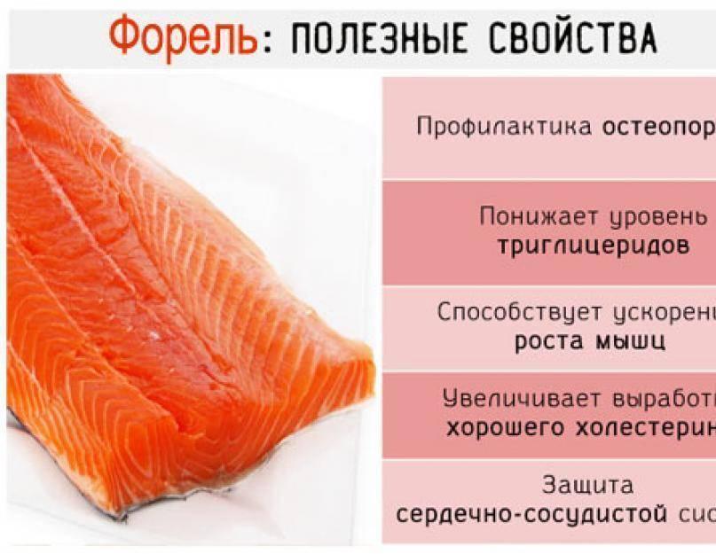Навага жареная калорийность на 100 грамм. ценный морепродукт — навага, расскажем о ее полезных свойствах и вкусовых качествах. способы приготовления наваги