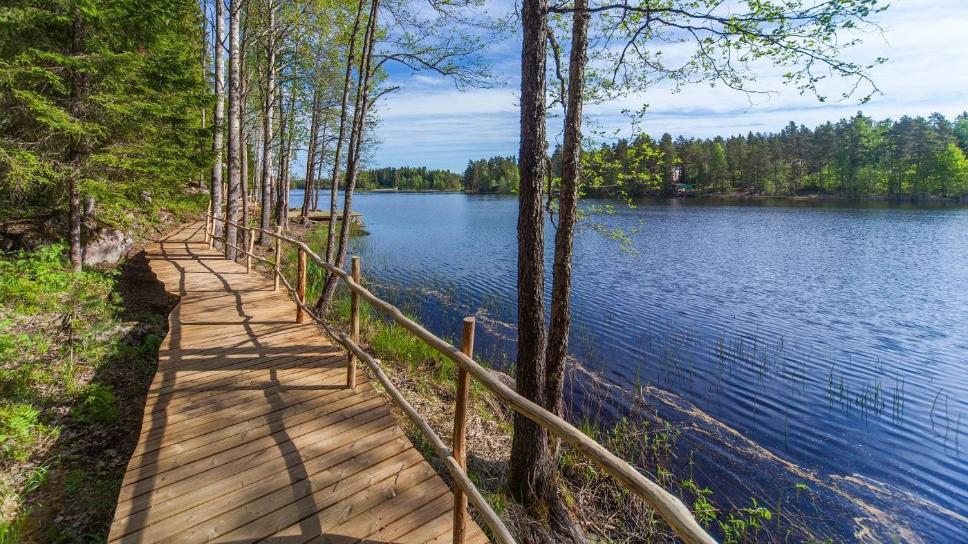 Озеро врево, лужский район. базы отдыха, рыбалка, карта, отзывы, фото, видео, как добраться — туристер.ру