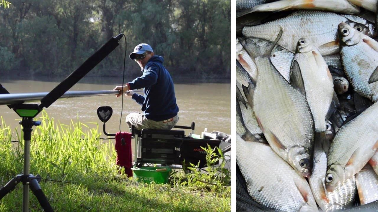 Особенности рыбалки на спиннинг: выбор подходящего удилища и техника ловли