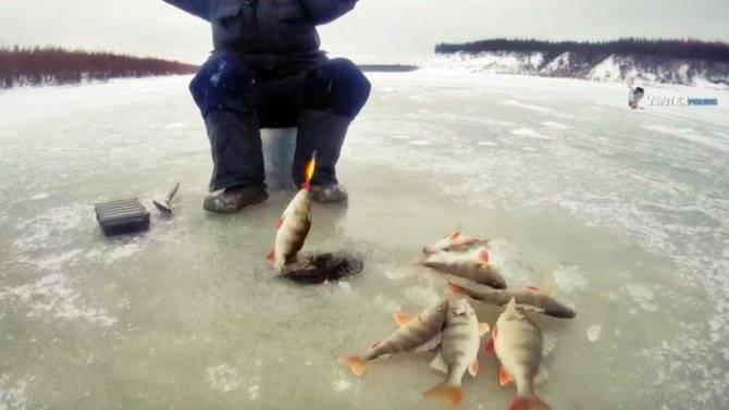 Рыбалка с берега в анапе