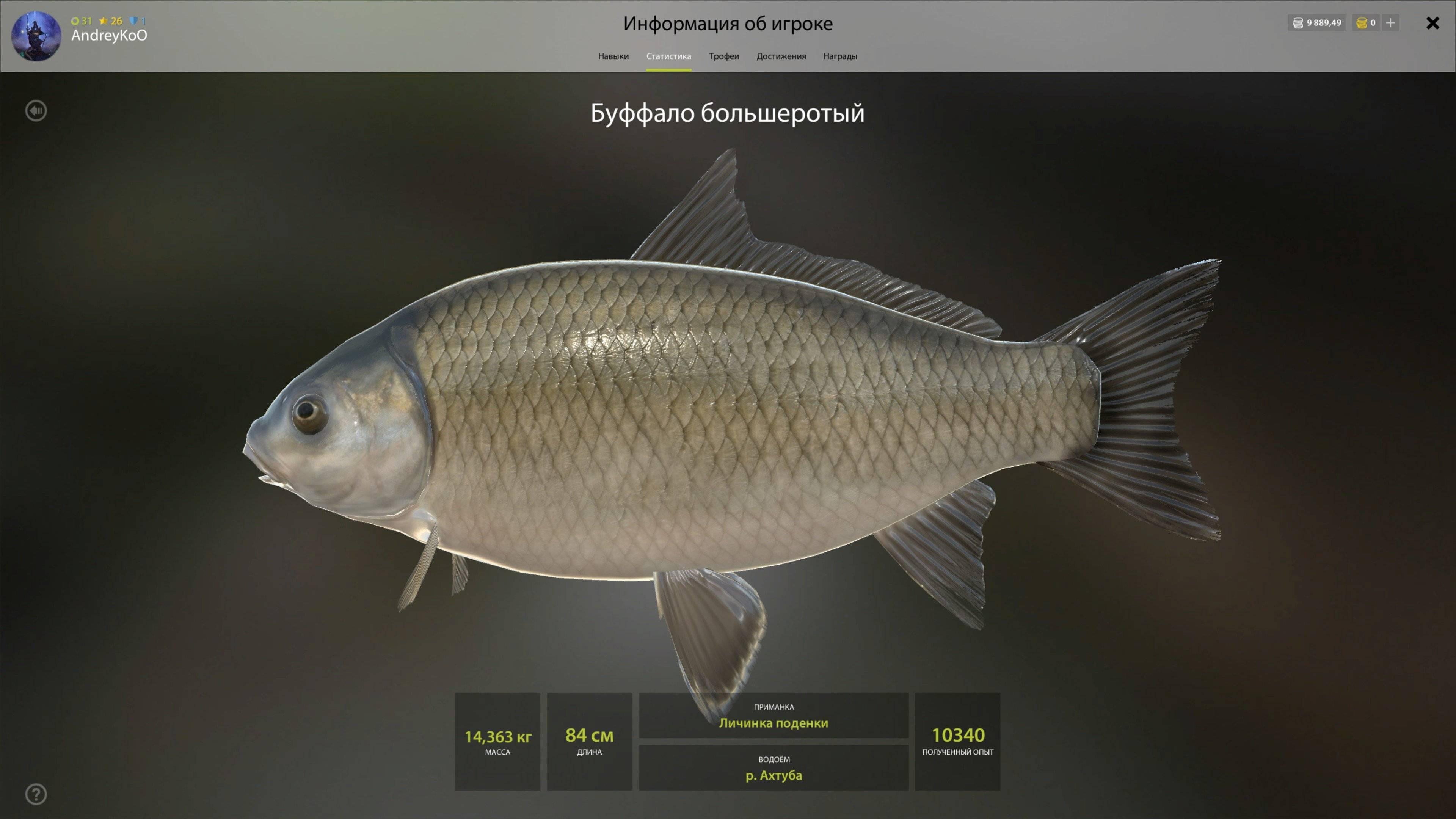 Ловля буффало: советы, фото и видео - рыбалка на ахтубе с комфортом - база трёхречье