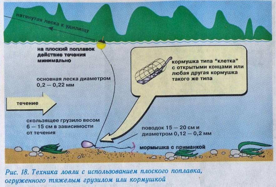 Обычные и плоские поплавки для ловли на течении