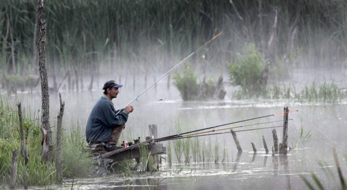 Рекомендации рыбной ловли в дождь