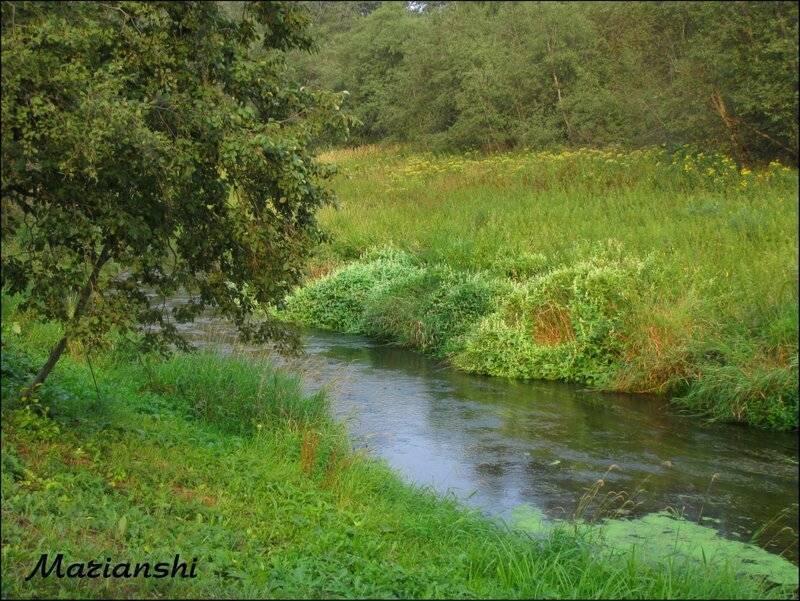 Истра (река) — википедия. что такое истра (река)