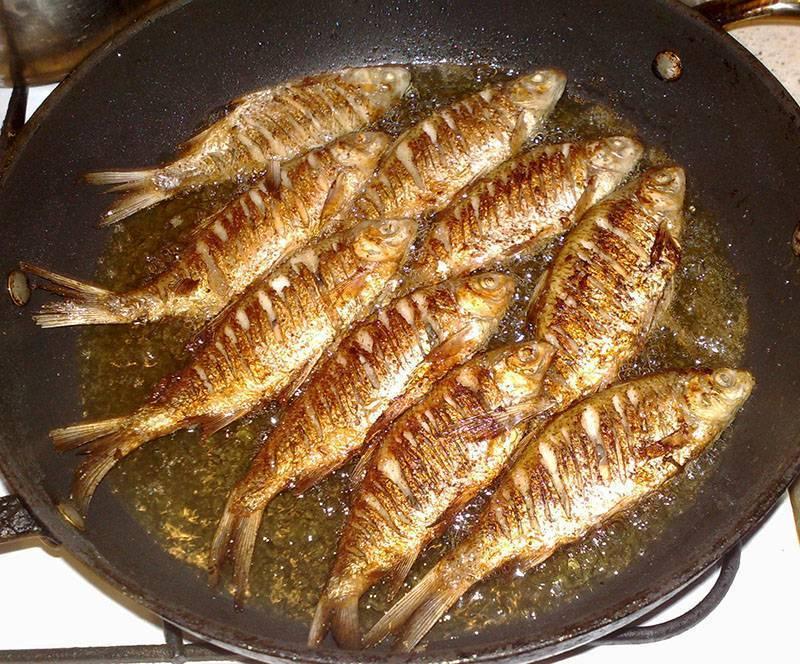 Какая рыба лучше для ухи
