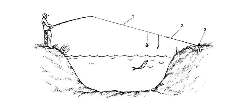 Ловля на пружину: устройство, элементы оснастки, монтаж, техника