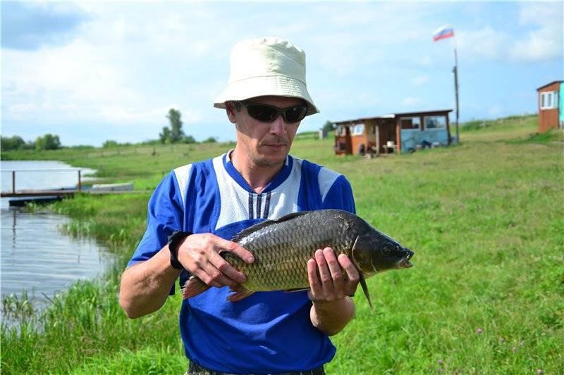 Топ-5 мест для продуктивной рыбалки в ульяновской области