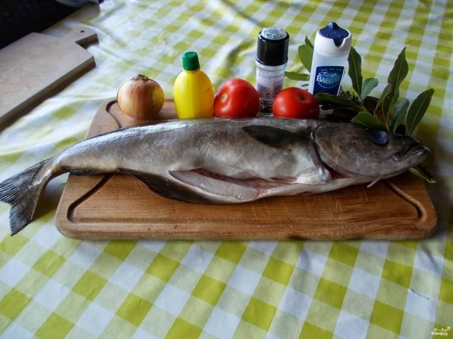 Что за рыба сайда, рецепт приготовления на плите, в духовке и на мангале