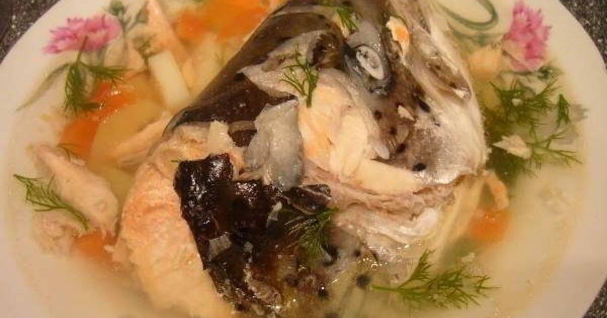 Уха из семги - 10 вкусных рецептов (с фото)