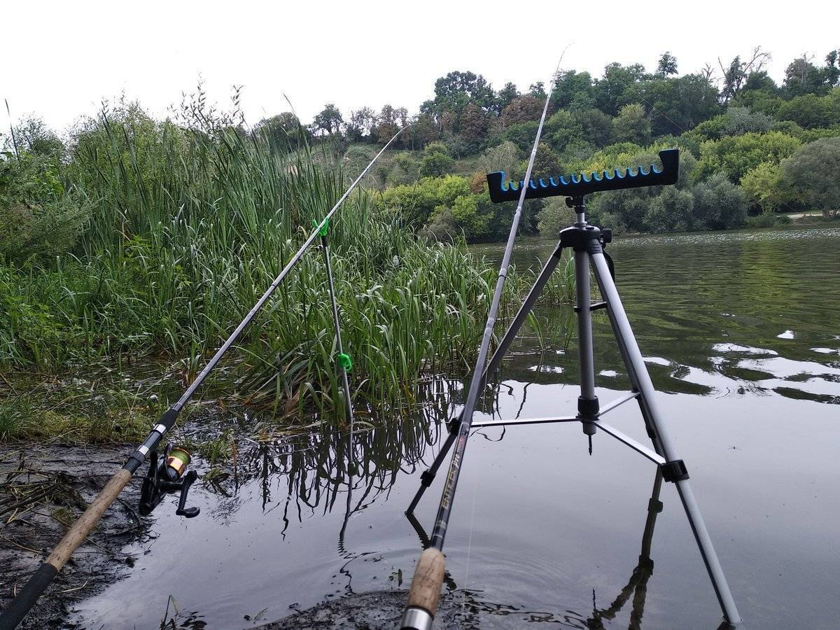 Как ловить рыбу на фидер