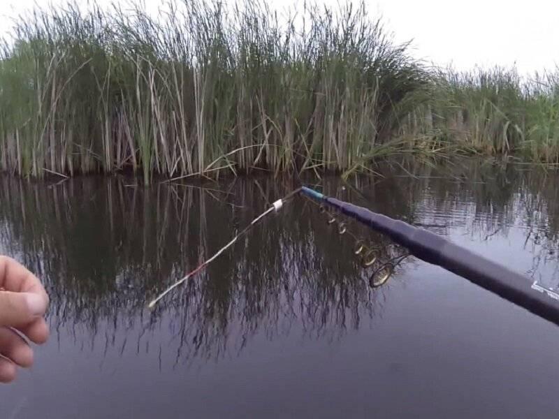 Ловля карася на боковой кивок летом: выбор кивка, мормышки и места для рыбалки
