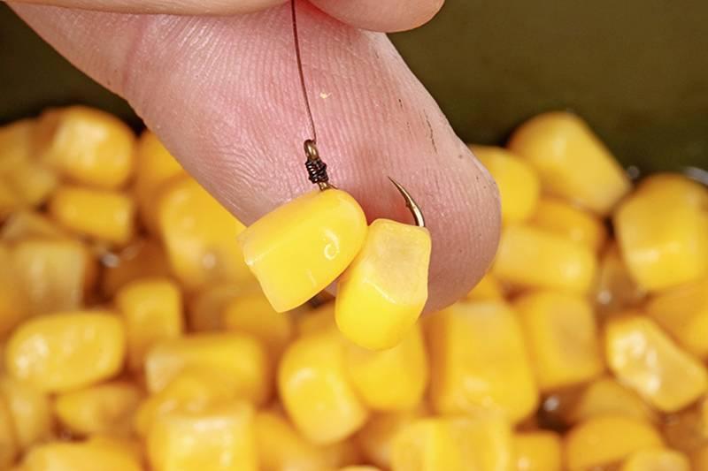 Как насадить кукурузу на крючок правильно - насаживание одного, нескольких и «бутербродом»