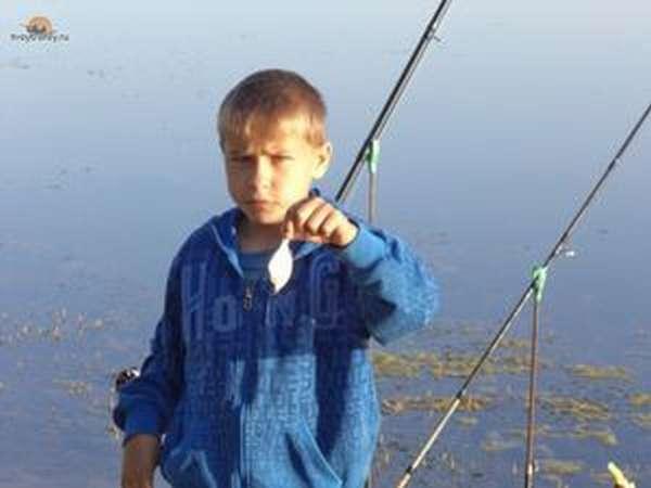 Биологическое описание рыбы лобан, ее поведение и ловля