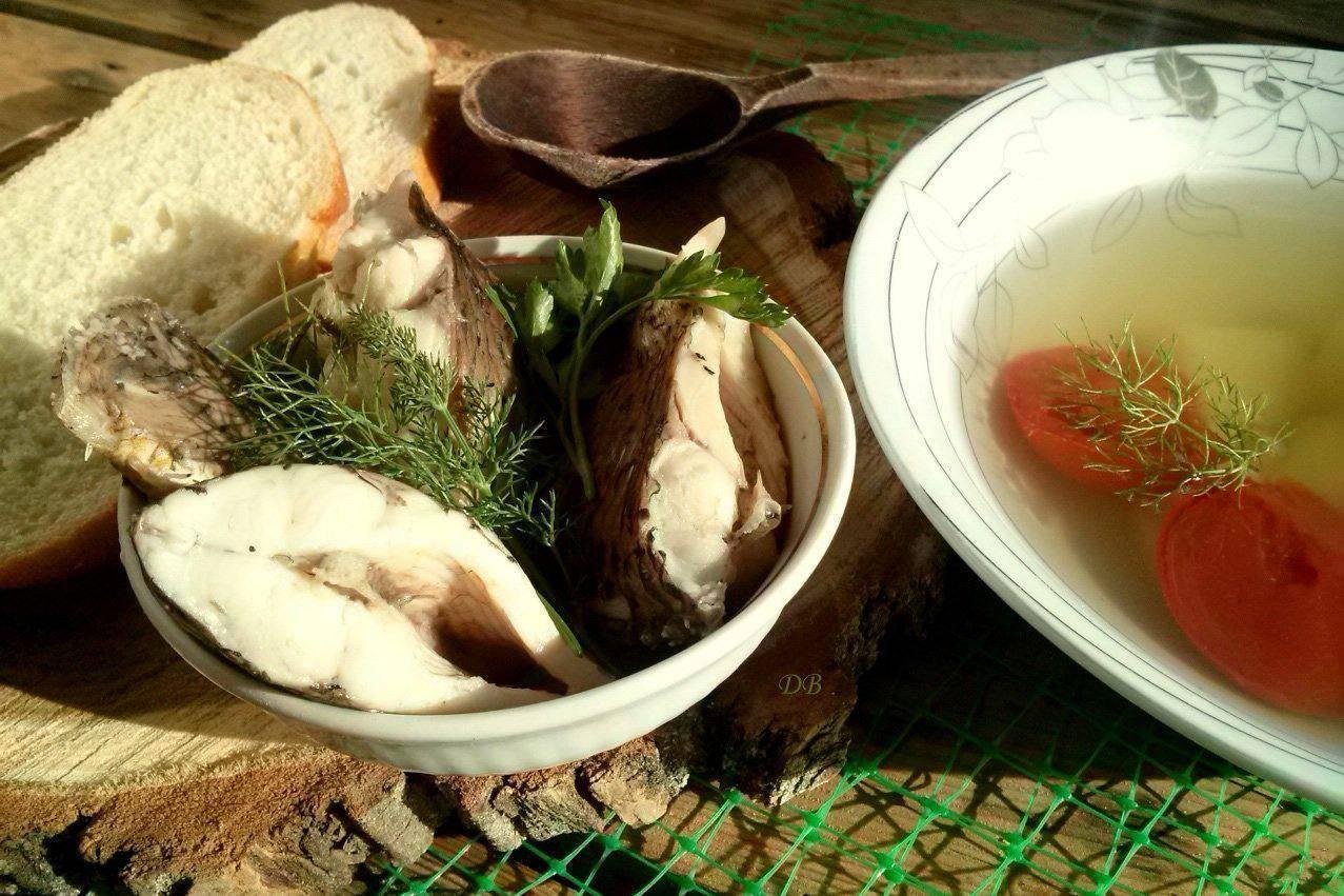Уха из карпа: рецепты с фото пошагово, приготовление супа из головы дома   berlogakarelia.ru