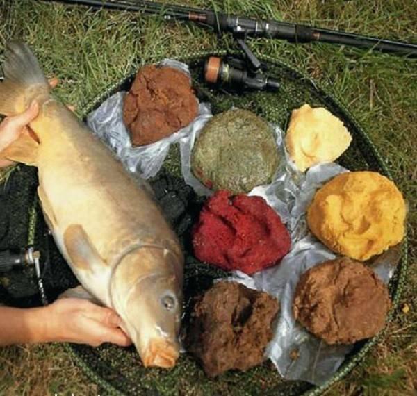 Тесто для рыбалки: как сделать своими руками, рецепты приготовления из муки