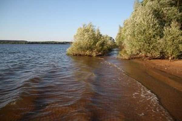 Озернинское водохранилище — какая рыба водится?