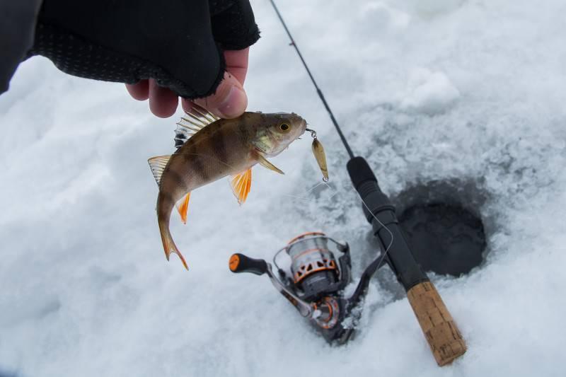 Ловля окуня на блесну зимой – рыбалке.нет