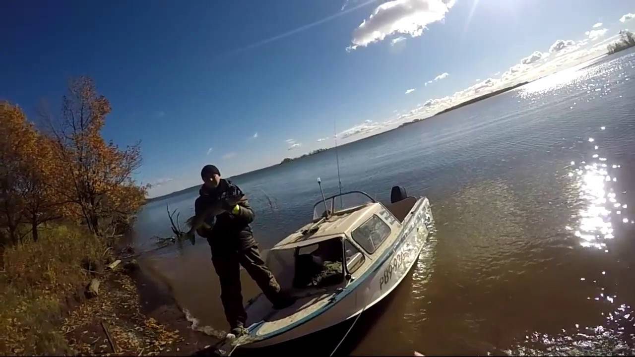 Рыбалка в завьяловском районе (удмуртия). форум и отчеты
