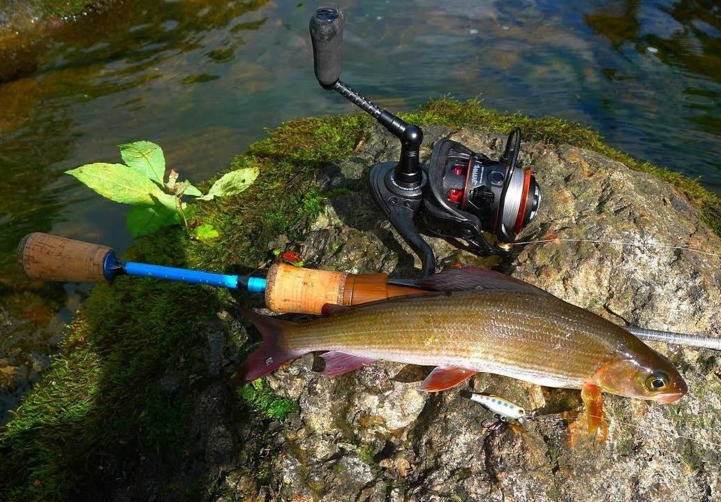 Рыбалка в хакасии: советы рыболовам