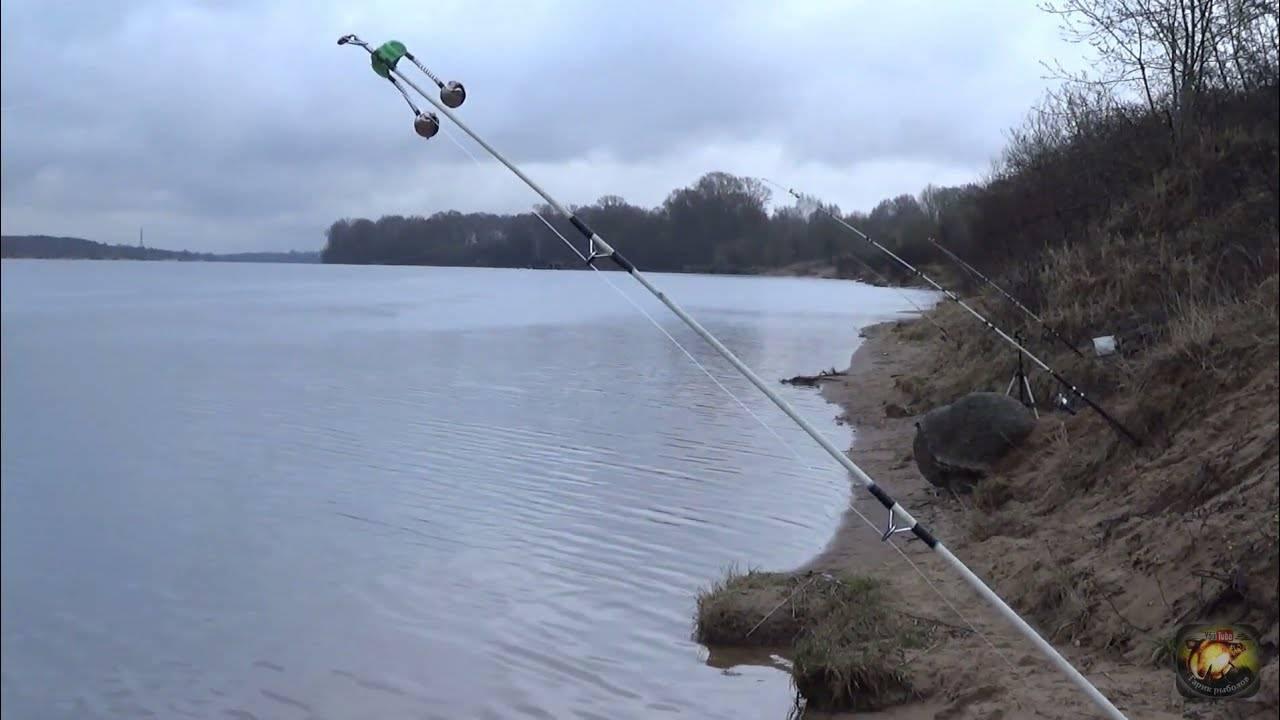 Ловля налима зимой – где искать рыбу и чем прикармливать [2019]