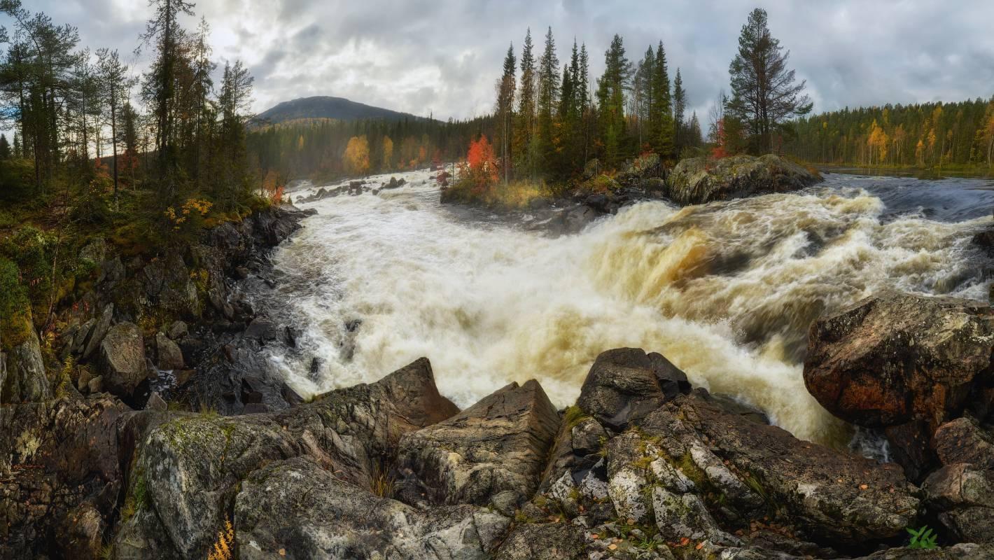 """Национальный парк """"паанаярви"""": история и фото"""