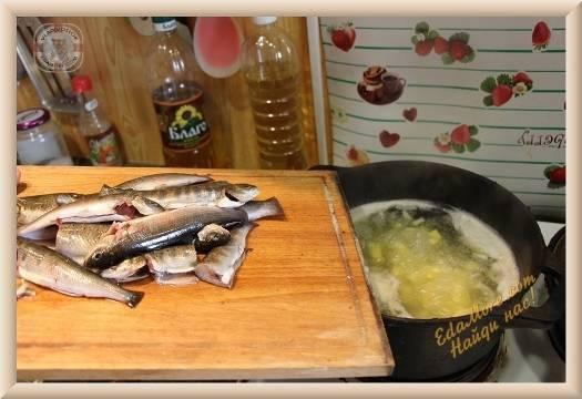 Хариус, рецепты приготовления