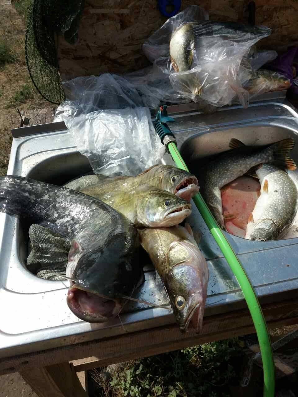 База отдыха «дом рыбака на ахтубе» ахтуба, в астраханской области - цены 2020, фото, отзывы