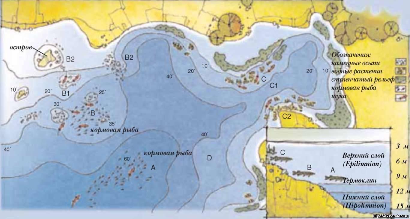 Рыбалка в ленинградской области: популярные места и озера