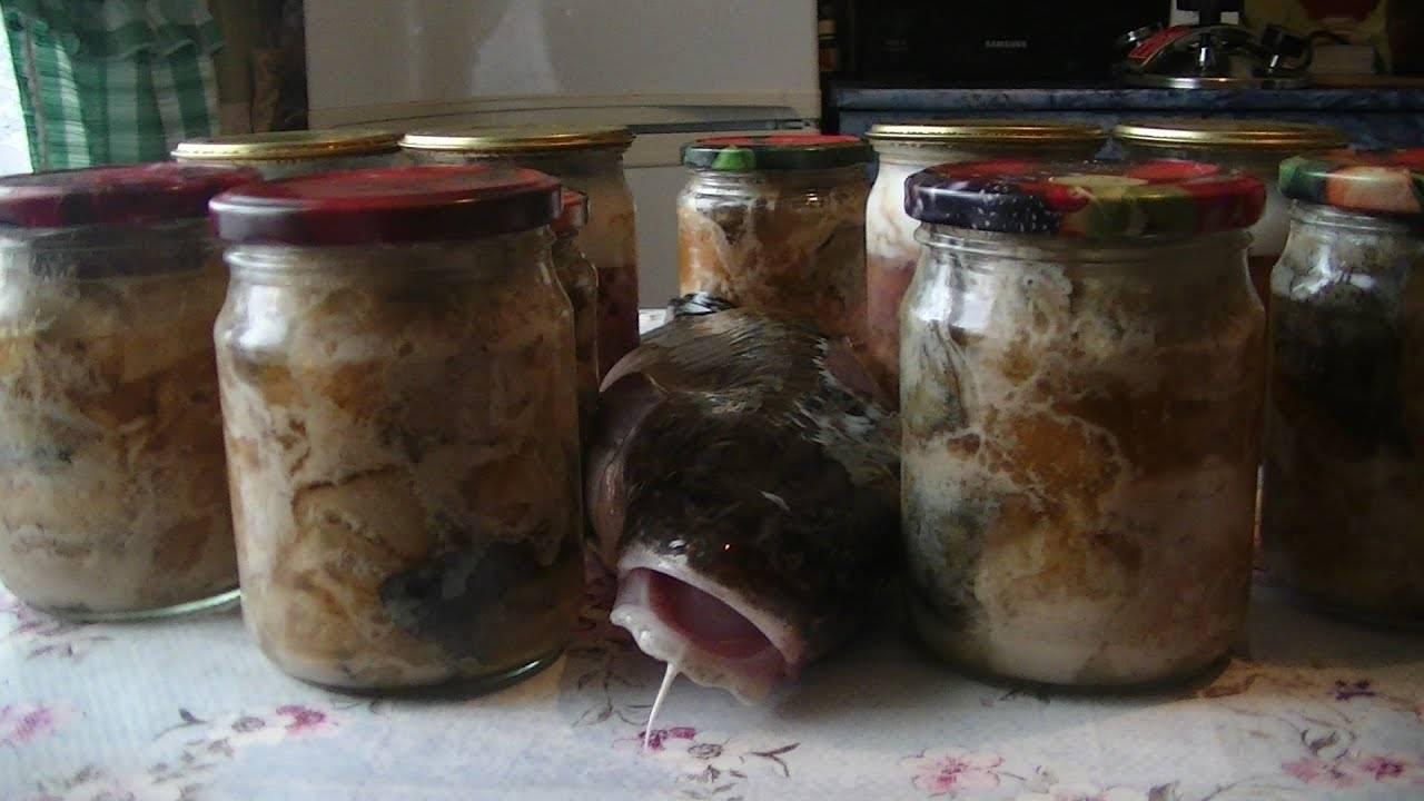 Рыбные консервы в автоклаве в домашних условиях – рецепты